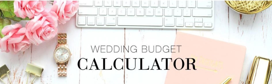 August 2016 the sassy celebrant interactive wedding budget tool junglespirit Image collections